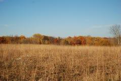 Pradera rural del otoño con el contexto colorido de los árboles de la caída Foto de archivo