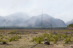 Prado abandonado en la primavera en el pie de las montañas de Sayan, valle de Tunkinskaya, Buriatia Foto de archivo libre de regalías