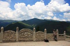prado alpestre de la montaña imágenes de archivo libres de regalías