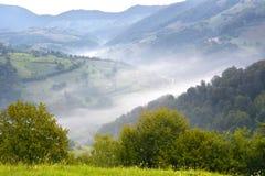 Prado alpestre hermoso con la hierba verde Salida del sol paisaje en las colinas salvajes de Transilvania Holbav rumania fotos de archivo libres de regalías