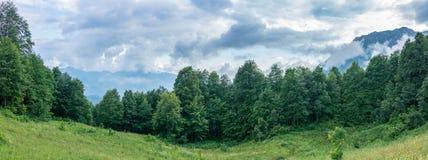 Prado alpino, cercado pela floresta e pelas montanhas nas nuvens fotografia de stock