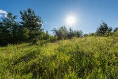Prado alpino verde con el cielo azul y el sol, paisaje del verano, fondo natural Fotografía de archivo libre de regalías