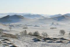Prado bajo nieve en invierno Imagen de archivo libre de regalías