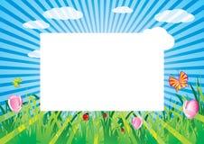 Prado brilhante do verão ilustração stock