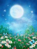 Prado colorido com borboletas Fotos de Stock Royalty Free