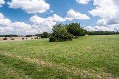 Prado com arbustos, campos e os montes pequenos no fundo em Boêmia central Foto de Stock Royalty Free