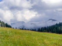 Prado com as montanhas nebulosas no fundo foto de stock royalty free