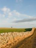 Prado com as paredes de pedra naturais Imagem de Stock