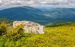 Prado com os pedregulhos em montanhas Carpathian no verão Foto de Stock Royalty Free