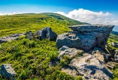 Prado com os pedregulhos em montanhas Carpathian no verão Fotografia de Stock Royalty Free