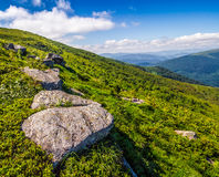 Prado com os pedregulhos em montanhas Carpathian no verão Imagem de Stock