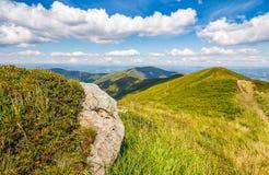Prado com os pedregulhos em montanhas Carpathian no verão Imagens de Stock