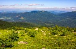 Prado com os pedregulhos em montanhas Carpathian no verão Fotos de Stock Royalty Free