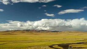 Prado com rebanho dos carneiros contra montanhas e céu vídeos de arquivo
