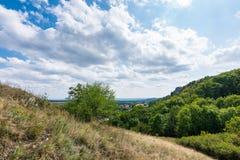 Prado com rocha e árvore sob o céu azul - ajardine na montanha pequena Imagens de Stock Royalty Free