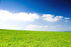 Prado con el cielo claro azul. Fotografía de archivo