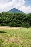Prado con los árboles y colina de Milesovka en el fondo Imágenes de archivo libres de regalías