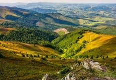 Prado con los cantos rodados en montañas cárpatas en verano Foto de archivo