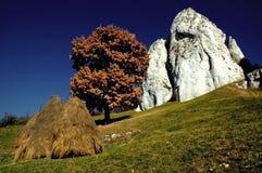 Prado con los haystacks y las rocas blancas Imágenes de archivo libres de regalías