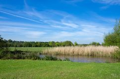 Prado da água de Harnham, Salisbúria, Inglaterra imagens de stock royalty free