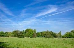 Prado da água de Harnham, Salisbúria, Inglaterra fotos de stock royalty free