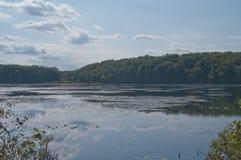 Prado da lagoa em Braintree, miliampère Fotos de Stock