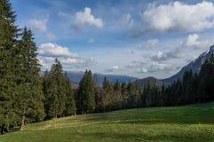 Prado da montanha Foto de Stock Royalty Free