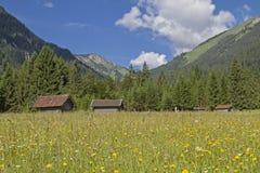 Prado da montanha com cabanas do feno Foto de Stock Royalty Free