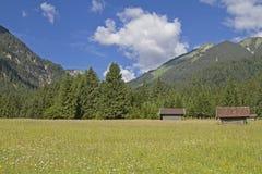 Prado da montanha com cabanas do feno Imagem de Stock