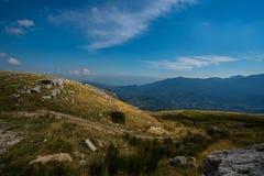 Prado da montanha no verão Fotografia de Stock