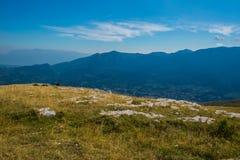 Prado da montanha no verão Foto de Stock