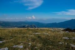 Prado da montanha no verão Imagens de Stock