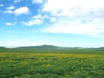 Prado de Aba Hongyuan Zoige Fotografía de archivo libre de regalías