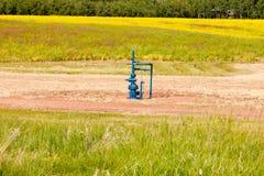 Prado de Alberta Canada del manantial del gas natural imagenes de archivo
