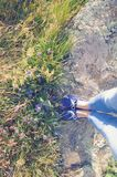 Prado de florescência e um trajeto de pedra Flores violetas, grama Pés, mocassins azuis e calças de brim Imagens de Stock