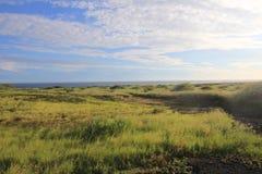 Prado de Hawaii debajo del cielo claro fotografía de archivo