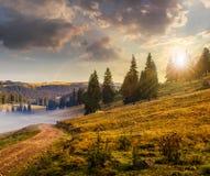 Prado de la ladera con el bosque en montaña en la puesta del sol Imagen de archivo libre de regalías