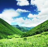 Prado de la montaña Foto de archivo