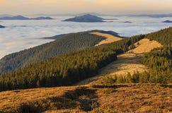 Prado de la montaña con el bosque y las nubes imagen de archivo