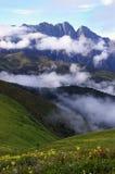 Prado de la montaña de Jiudingshan Imagenes de archivo