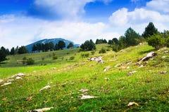 Prado de la montaña en los Pirineos fotos de archivo