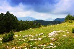 Prado de la montaña en los Pirineos cataluña Imágenes de archivo libres de regalías