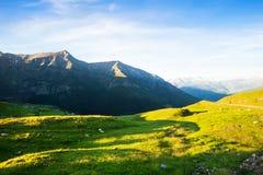Prado de la montaña en los Pirineos en verano Imagenes de archivo
