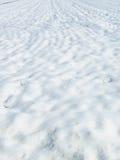 Prado de la nieve Fotografía de archivo