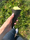 Prado de la primavera con la hierba verde y los dientes de le?n amarillos Uno puede ver las piernas de una muchacha que est? desc fotografía de archivo libre de regalías