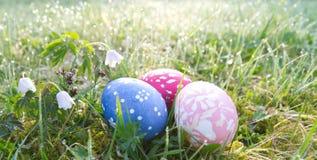 Prado de la primavera con los huevos de Pascua foto de archivo libre de regalías