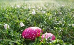 Prado de la primavera con los huevos de Pascua fotos de archivo