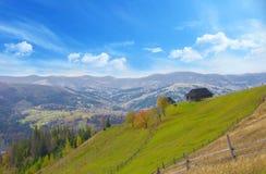 Prado de la primavera en las montañas fotografía de archivo libre de regalías