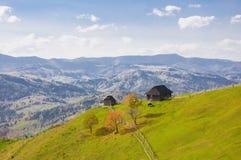 Prado de la primavera en las montañas foto de archivo