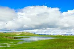 prado de Tíbet imagen de archivo libre de regalías